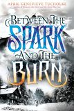 Jacket image for Between the Spark and the Burn
