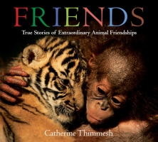 Jacket Image For: Friends (board book)
