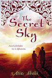 Jacket Image For: The Secret Sky