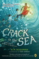 Jacket Image For: A Crack in the Sea