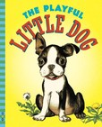 Jacket Image For: The Playful Little Dog