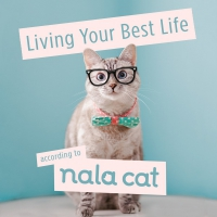 Jacket Image For: Living Your Best Life According to Nala Cat
