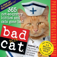 Jacket Image For: Bad Cat Page-A-Day Calendar 2018