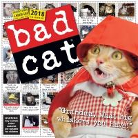 Jacket Image For: Bad Cat Wall Calendar 2018