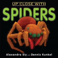 Jacket Image For: Up Close With Spiders