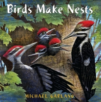 Jacket Image For: Birds Make Nests
