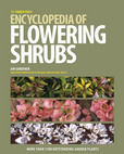 Jacket Image For: The Timber Press Encyclopedia of Flowering Shrubs