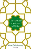 Jacket Image For: Letters to a Young Muslim