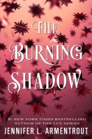 Jacket Image For: The Burning Shadow