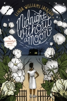 Jacket Image For: Midnight Without a Moon