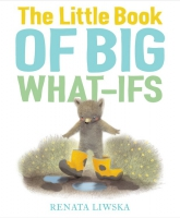 Jacket Image For: The Little Book of Big What-Ifs