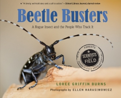 Jacket Image For: Beetle Busters