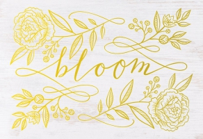 Jacket Image For: Bloom