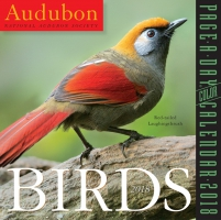 Jacket Image For: Audubon Birds Page-A-Day Calendar 2018