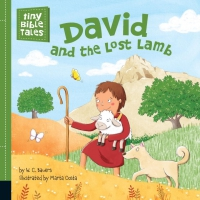 Jacket Image For: David and the Lost Lamb