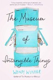 Jacket image for The Museum of Intangible Things