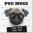 Jacket Image For: Pug Mugs