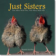 Jacket image for Just Sisters
