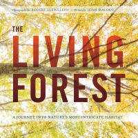 Jacket Image For: The Living Forest