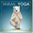 Jacket Image For: Animal Yoga