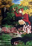 Jacket Image For: The Ancient Magus' Bride Vol. 3