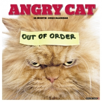 Jacket Image For: Angry Cat 2018 Wall Calendar