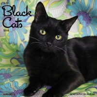 Jacket Image For: Black Cats 2018 Wall Calendar