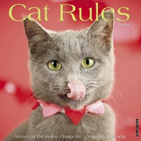 Jacket Image For: Cat Rules 2018 Wall Calendar