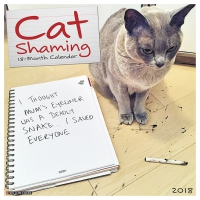 Jacket Image For: Cat Shaming 2018 Wall Calendar