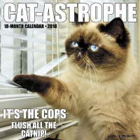 Jacket Image For: Cat-astrophe 2018 Wall Calendar