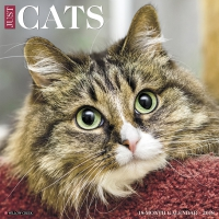 Jacket Image For: Just Cats 2018 Wall Calendar