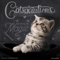 Jacket Image For: Catspirations 2018 Wall Calendar