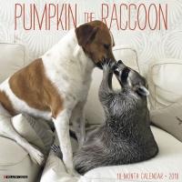Jacket Image For: Pumpkin the Raccoon 2018 Wall Calendar