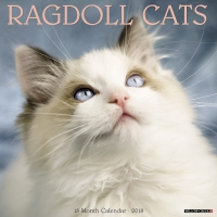 Jacket Image For: Ragdoll 2018 Wall Calendar