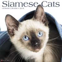 Jacket Image For: Siamese Cats 2018 Wall Calendar