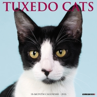 Jacket Image For: Tuxedo Cats 2018 Wall Calendar