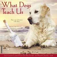 Jacket Image For: What Dogs Teach Us 2018 Wall Calendar