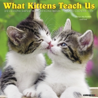 Jacket Image For: What Kittens Teach Us 2018 Wall Calendar