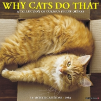 Jacket Image For: Why Cats Do That 2018 Wall Calendar
