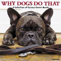 Jacket Image For: Why Dogs Do That 2018 Wall Calendar