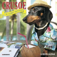 Jacket Image For: Crusoe the Celebrity Dachshund 2018 Mini Wall Calendar