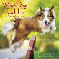 Jacket Image For: What Dogs Teach Us 2018 Mini Wall Calendar