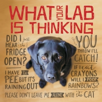 Jacket Image For: What Your Lab Is Thinking