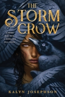 Jacket Image For: The Storm Crow